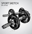sport doodles vector image vector image