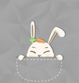 Hide rabbit vector image