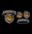 armadillo mascot logo design vector image vector image