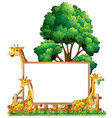 board template with three giraffes in park vector image vector image