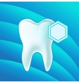 Concept teeth protection eps 10 vector image vector image