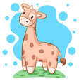 cute funny teddy giraffe - cartoon vector image