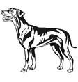 decorative standing portrait of dog german vector image vector image