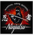 ninja warrior fighter - mixed martial art vector image vector image