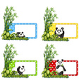 Polkadot labels with panda and bamboo vector image vector image