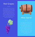 red grapes and wine barrel vector image vector image