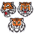 tiger head logo set template mascot design vector image vector image