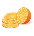 vector orange vector image vector image