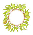 almond frame vector image vector image