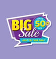 big sale concept banner promotion poster discoun vector image vector image