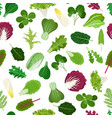 Salad vegetable leaves seamless pattern vector image