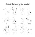 zodiac twelve constellations vector image