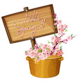 hello spring text banner vector image vector image