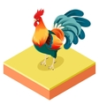 isometric rooster o square ground vector image