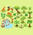 jungle plants animals set vector image vector image
