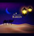 lanterns in desert at night sky vector image