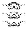 Swimming man on wave logo vector image