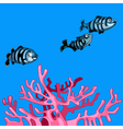 underwater striped fish and coral pink vector image vector image