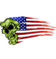 american flag with skull vector image vector image