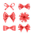 bow with ribbons satin silk decoration for vector image