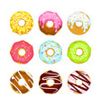 colorful cartoon sweet donuts vector image vector image