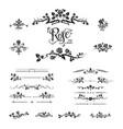 elegant black roses design vector image vector image