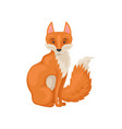flat icon of adorable sitting red fox side vector image vector image