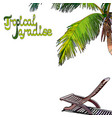 palm tree background with chaise-longue vector image