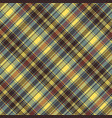 seamless pattern check plaid fabric texture vector image vector image