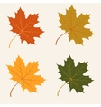 Abstract background with autumn maple leaves vector image