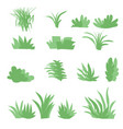 flat grasses set bush set with isolated white vector image