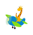 cute cute animal giraffe flies on a funny plane vector image