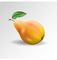 pear realistic 10eps pear punching bag vector image vector image