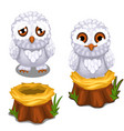 sad and cheerful owlet on the nest on stump vector image vector image