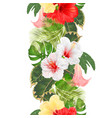 seamless border tropical flowers vector image vector image