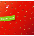 texture of strawberry vector image