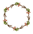wreath with rosehip vector image vector image