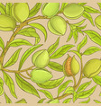 almond pattern vector image vector image