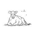 farm animal cow young red spotted with tag vector image vector image