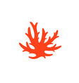 red coral vector image vector image