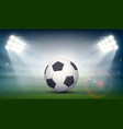 soccer ball on the field of the stadium vector image vector image