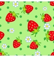 strawberry flowers vector image vector image