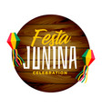 traditional festa junina holiday background vector image