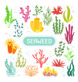 underwater seaweed coral silhouettes and algae vector image