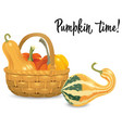 wicker basket full pumpkins isolated on white vector image vector image