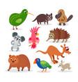 wild australia animals set in flat style vector image vector image