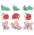 A caterpillar butterfly and a snail vector image