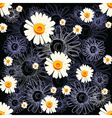 Seamless chamomile pattern with lined and colored vector image