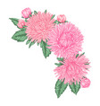 beautiful bouquet with pink asters and leaves vector image