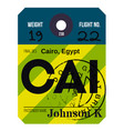 cairo airport luggage tag vector image vector image
